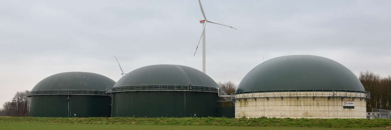 Biogas TerraVis, Exeler, Enzymbeigabe, Prozesse