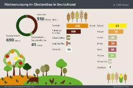 Infografik Säen Getreideanbau in Deutschland