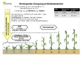 Düngeempfehlungen Getreide