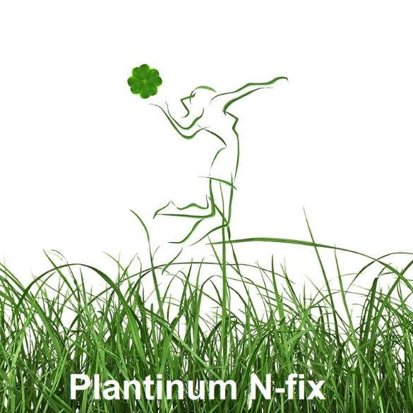 Plantinum_N-fix
