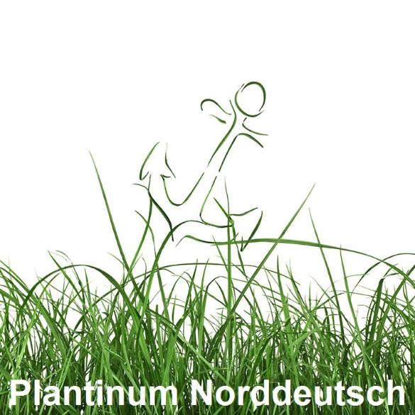 Plantinum Norddeutsch