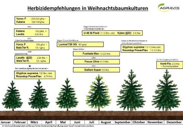 Weihnachtsbäume Herbizide