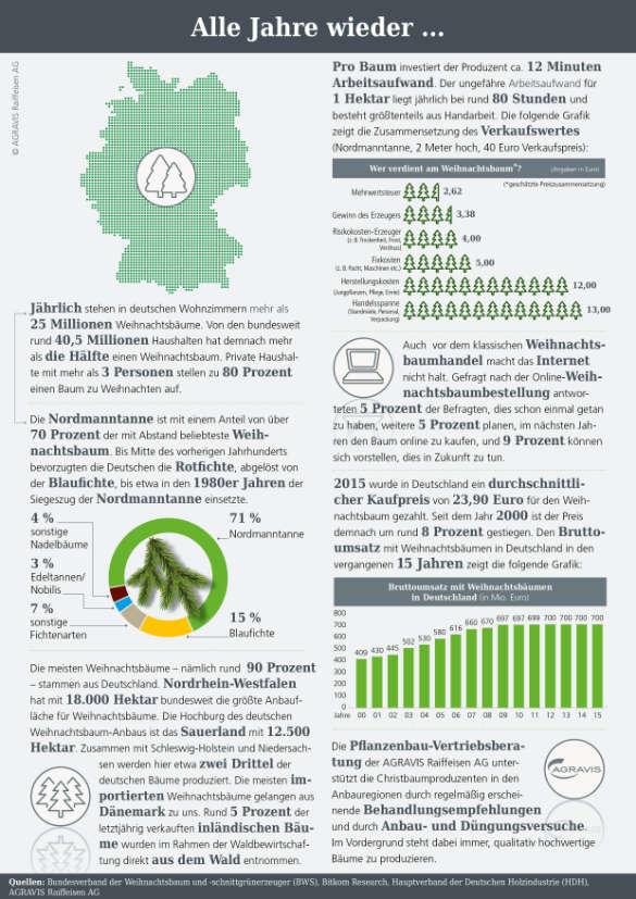 Infografik Weihnachtsbaumkulturen