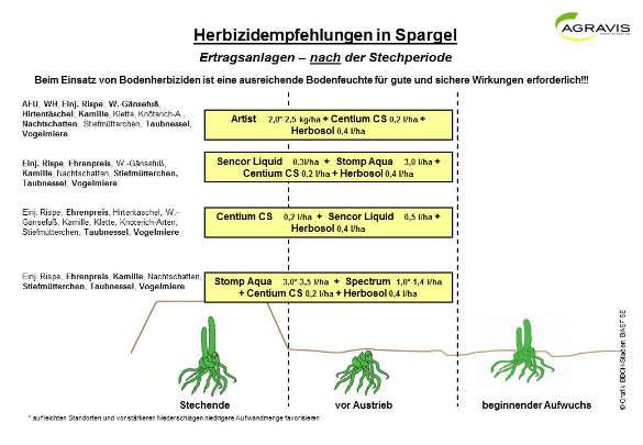 Herbizidempfehlung Spargel 2018