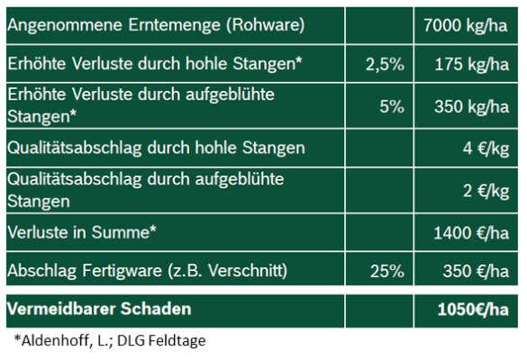 Wertverlust falsches Dammmanagement Spargel