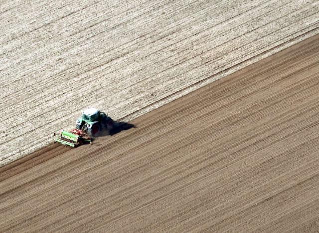 Getreideanbau Luftbild