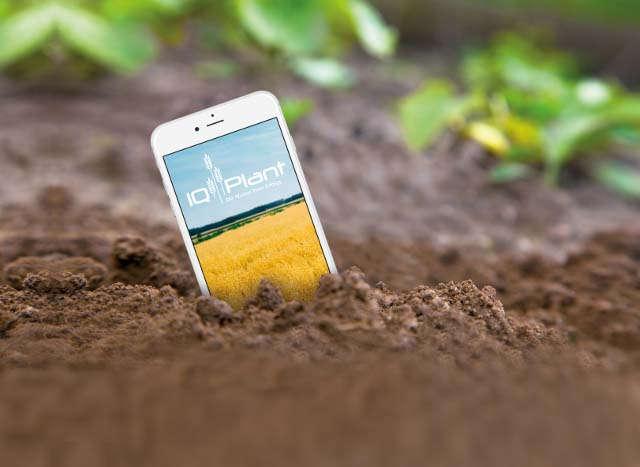 Relaunch, Teaser, Themen und Kampagnen, IQ-Plant, App