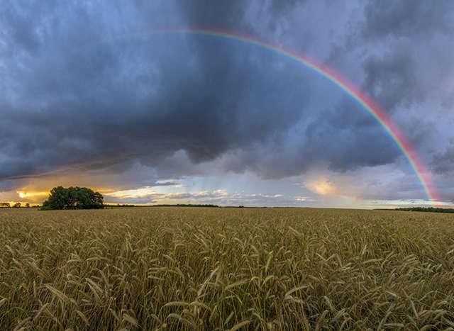 Relaunch Agrarwetter, Header, Teaser