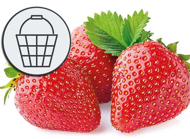 Infografik Erdbeeren Teaser 640 x 467